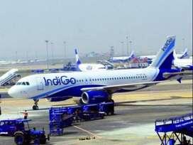 limited company permanent job.direct hiring. Indigo Airline Urgent hir