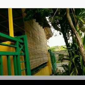 Tirai bambu SS okey