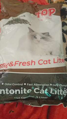 Cat hotel dan pakan kucing -burung