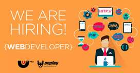 We required website developer with knowledge of Digital marketing