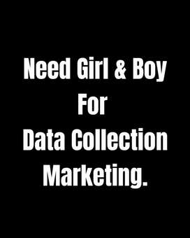 Need Girl and Boy for data collection marketing. Girl Recruitment