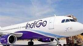 huge job in indigo airlines apply fast,