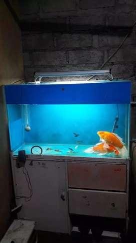 Tank Aquarium ukuran 1 meter tebal kaca 8mm