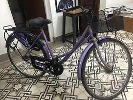 Ladybird BSA cycle