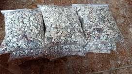 Batu Tanaman Hias
