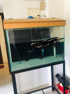 Fish tank 36*24*18
