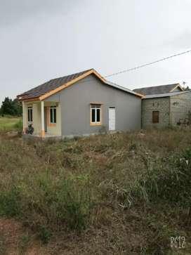 Disewakan/dikontrakan rumah type 60 m2  luas tanah 260 m2