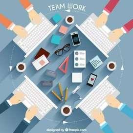 Web design/development,video editing, excel sheet