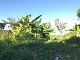 Tanah pinggir jalan MURAH permeter hanya 770k siap bangun