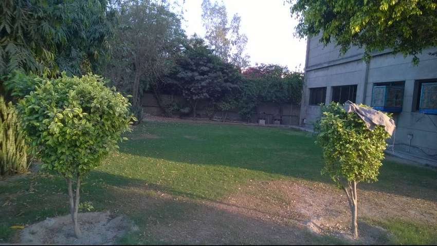 BEAUTIFUL FACTORY FOR SALE ON FEROZEPUR ROAD LAHORE 0