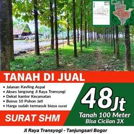 Investasi Tanah Murah Bogor Bonus Pohon Jati