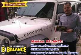 Hanya dg Dipasang Balance Mobil bisa Stabil di berbagai Kondisi Jalan