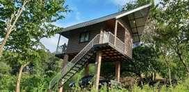 Jungle Zone- private resort for rent