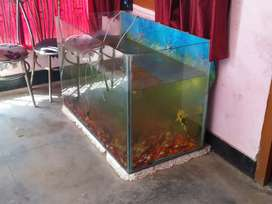 BIG SIZE AQUARIUM