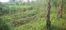 Di jual tanah peruntukan usaha purnitur cocok