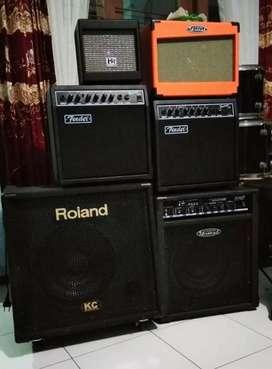 Ampli speaker gitar bass vocal keyboard