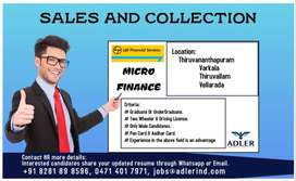 LOANS AND COLLECTION OFFICER