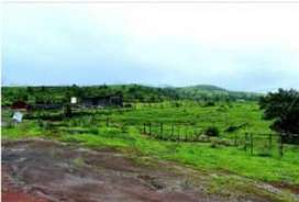 ^Fully developed Agriculture Lands/Plots - Best Investment, Mahad