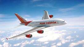 Air Ticketing Executive