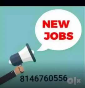 Fresher experienced back office, customer are executive are needed