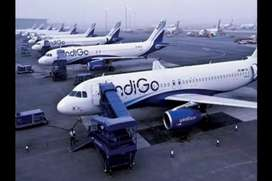Airlines job Hiring- Airport Job- Male / Female Fresher to Experience