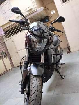 Bajaj Dominar D400 Brand New Condition