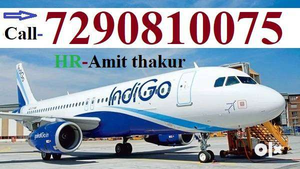 8th,10th ,12th,Graduations Joining For Freshers Airport Ground Staff j 0