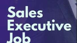 Required  Sales Executive (ladies) for Online Store
