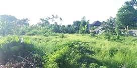 Dijual tanah daerah wisatawan Canggu pererenan