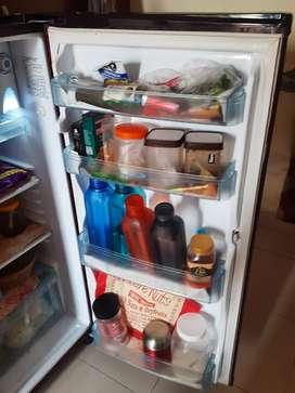 Kelvinator fridge sale