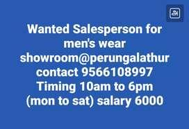 Wanted Salesman