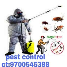 Max   pest/control