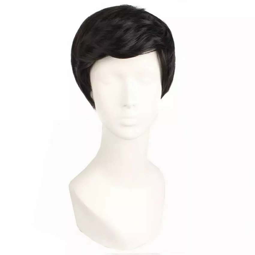 Male Wig Synthetic Hairs Short Wig 0