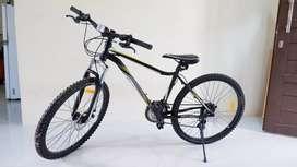 Sepeda wimcycle diamante