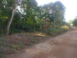 Jual tanah 1 ha