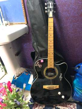 Acoustic guitar in perfect tuning and condition
