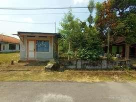 Jual Tanah Desa Tambakromo, Kecamatan Geneng, Kabupaten Ngawi