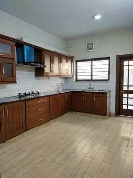 Brand New Basement Available For Rent 40*80..14  مرلا