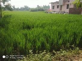 This land is in basti uttar pradesh near 2km from basti toll plaza