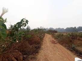 Jual Tanah 5 Hektar Bagus untuk Perumahan Jati Rasa, Setu