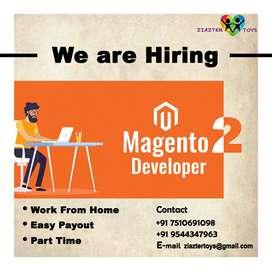 Magento 2 Developer