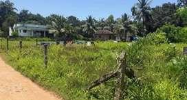 Selling land in korangrapady