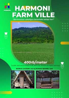 Tanah Kavling Sawah Produktif Lokasi Berkembang dan View Ajib