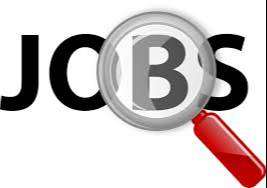 curiour company need field boy and payment collection chandigarh mohal