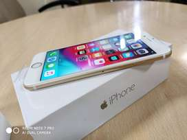 iphone 6 in best price