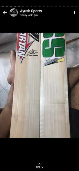 Cricket English Willow new bats