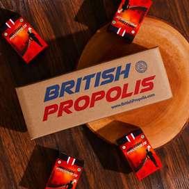 British Propolis - Asli Original 100%