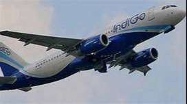 SECURITY GUARD***HIRING BY INDIGO AIRLINES APPLY