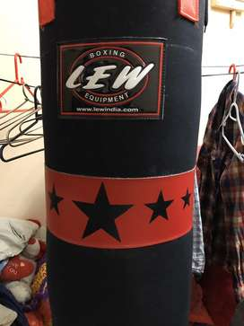 Punching Bag with double chain