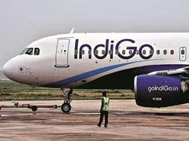 Hiring for ground staff in indigo